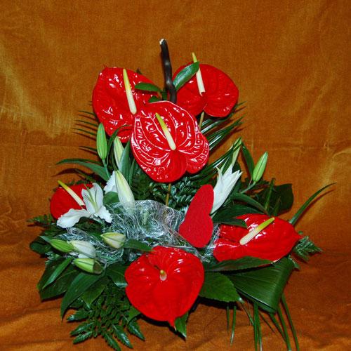 Flores zaragoza edelweiss flores naturales centros - Centros de plantas naturales ...